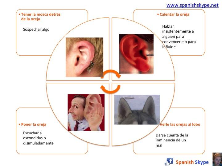 Expresiones idiomáticas: oreja